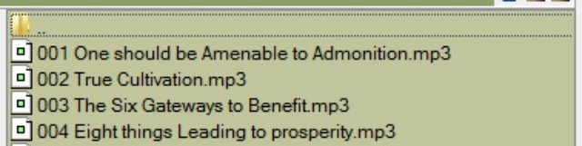 Filenames in FreeCommander