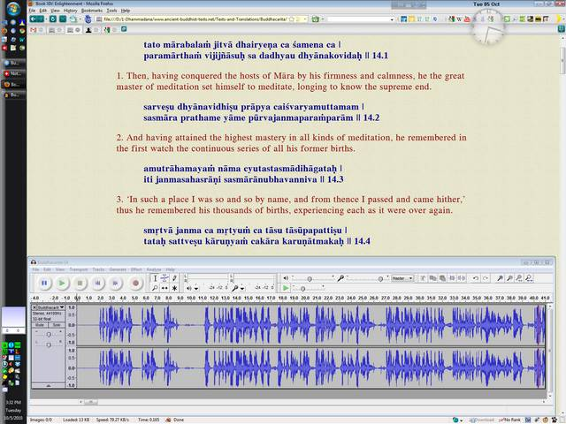 Audacity Workspace After